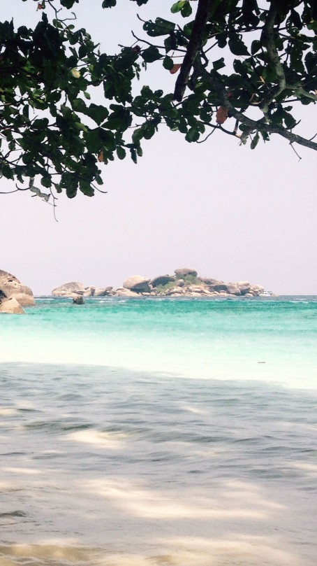 beneath the trees on Similan Islands