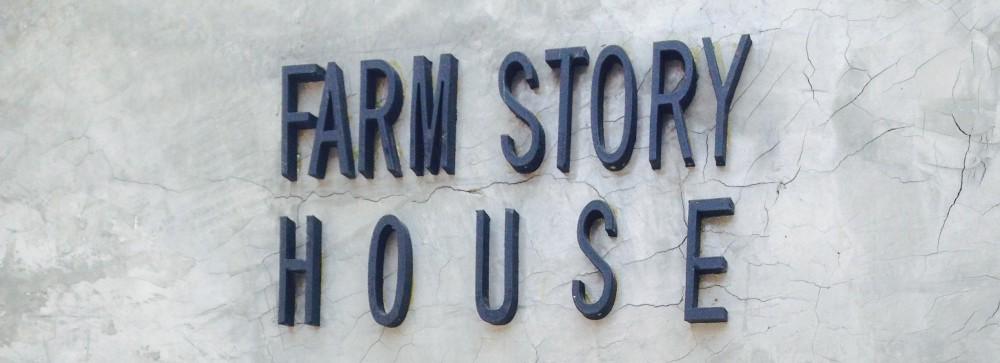 Farm Story House